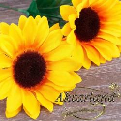 Aynı safa çiçeği - 50 gr