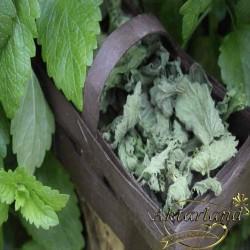 Melisa Yaprağı (Limon kokulu)- 50 gr