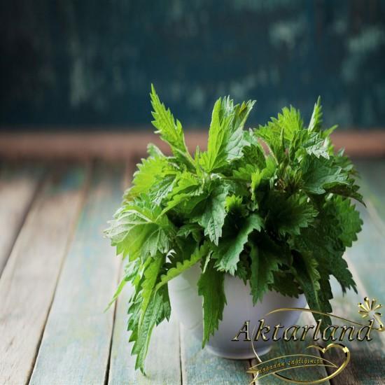 Isırgan Yaprağı Çiçek - 50 gr